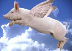 when_pigs_fly0